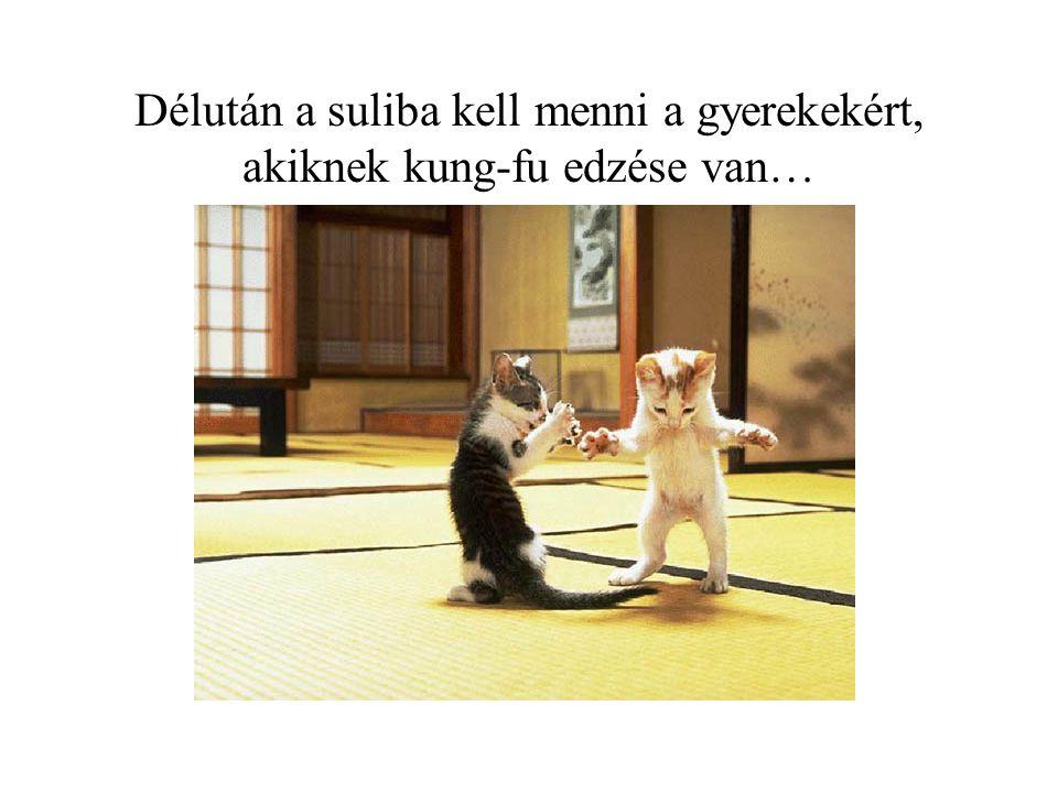 Délután a suliba kell menni a gyerekekért, akiknek kung-fu edzése van…