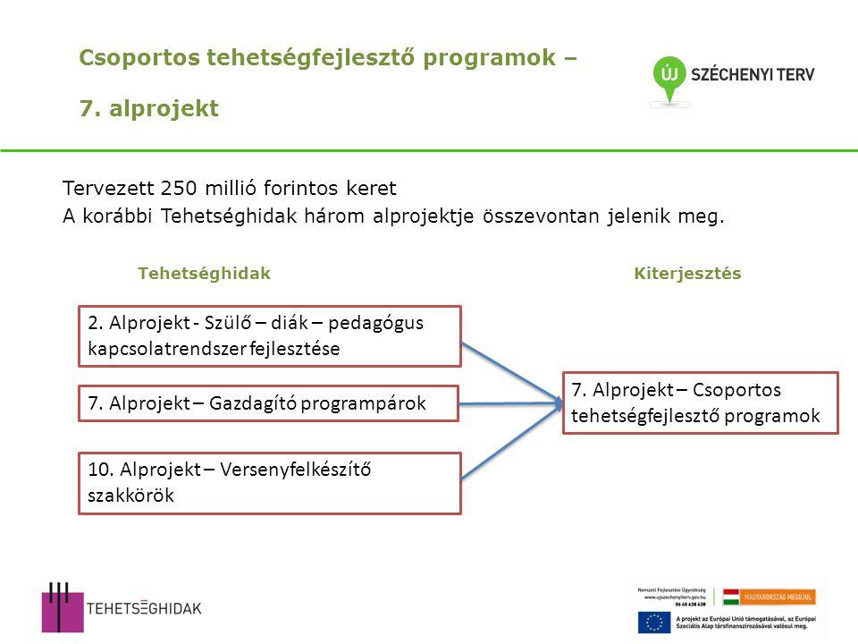 Csoportos tehetségfejlesztő programok – 7.