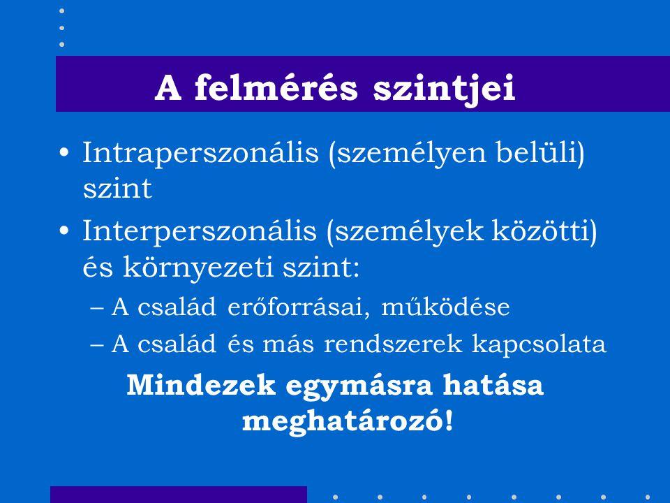 A felmérés szintjei Intraperszonális (személyen belüli) szint Interperszonális (személyek közötti) és környezeti szint: –A család erőforrásai, működés