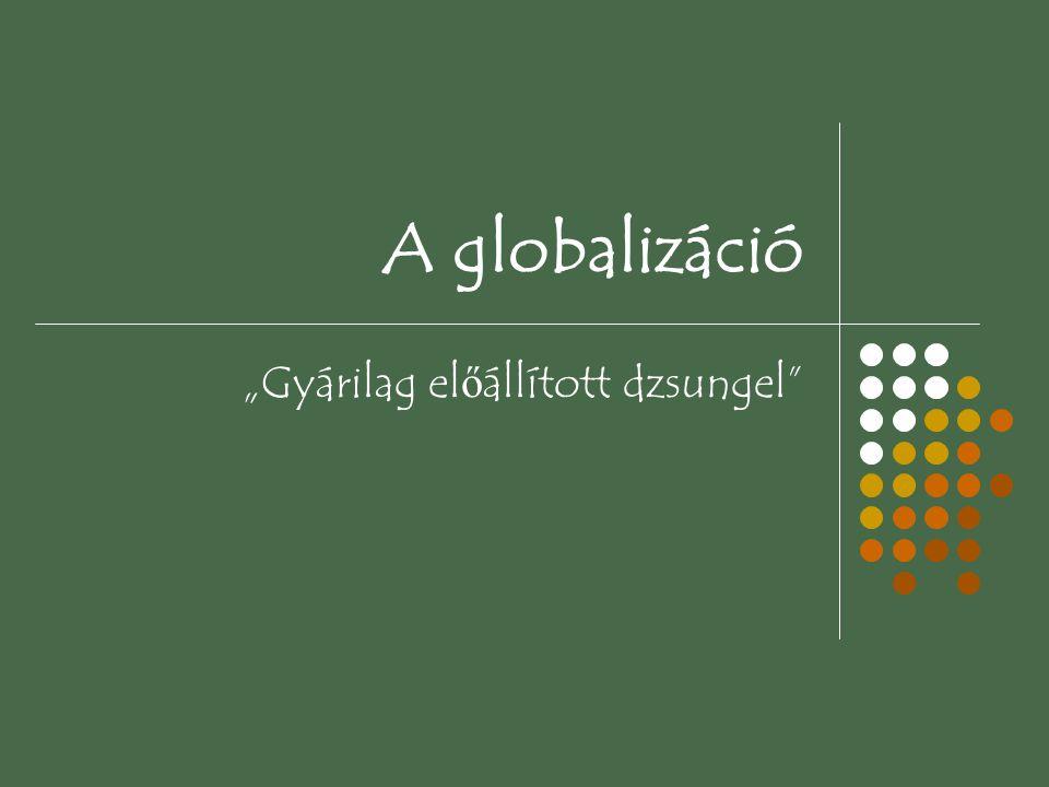 """A globalizáció """"Gyárilag el ő állított dzsungel"""""""