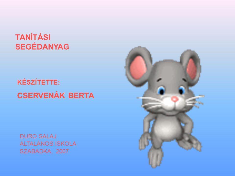 KÉSZÍTETTE: CSERVENÁK BERTA TANÍTÁSI SEGÉDANYAG ĐURO SALAJ ÁLTALÁNOS ISKOLA SZABADKA, 2007