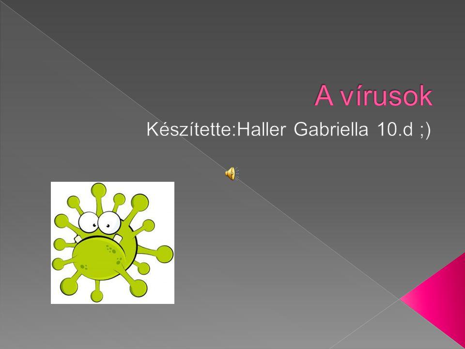  A vírus  Elnevezésének eredete  Herpesz  AIDS  Bárányhimlő  Nátha  Források