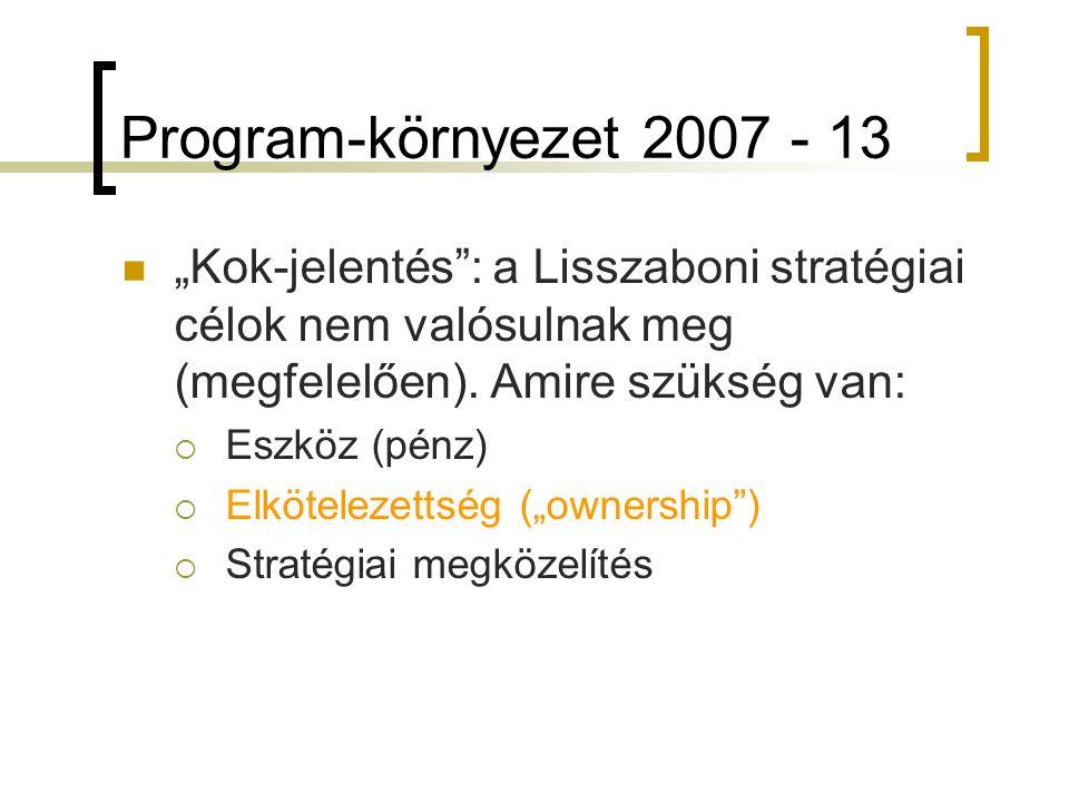 """Program-környezet 2007 - 13 """"Kok-jelentés : a Lisszaboni stratégiai célok nem valósulnak meg (megfelelően)."""