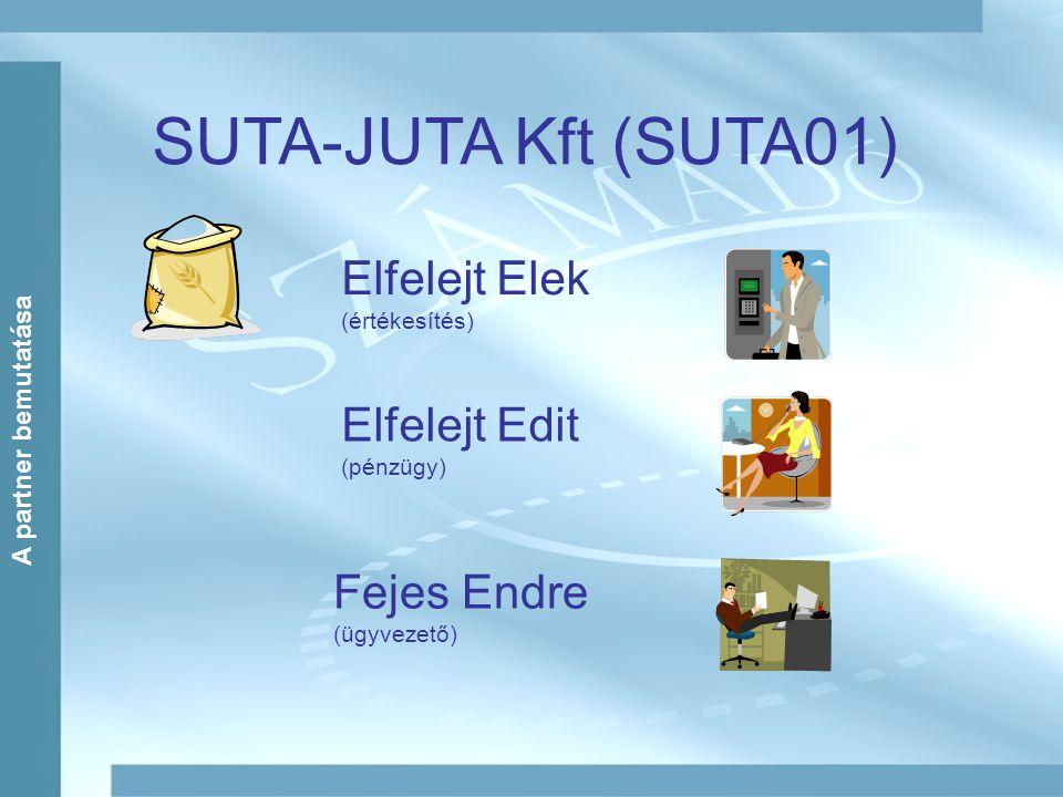 SUTA-JUTA Kft (SUTA01) Elfelejt Elek (értékesítés) Elfelejt Edit (pénzügy) Fejes Endre (ügyvezető) A partner bemutatása