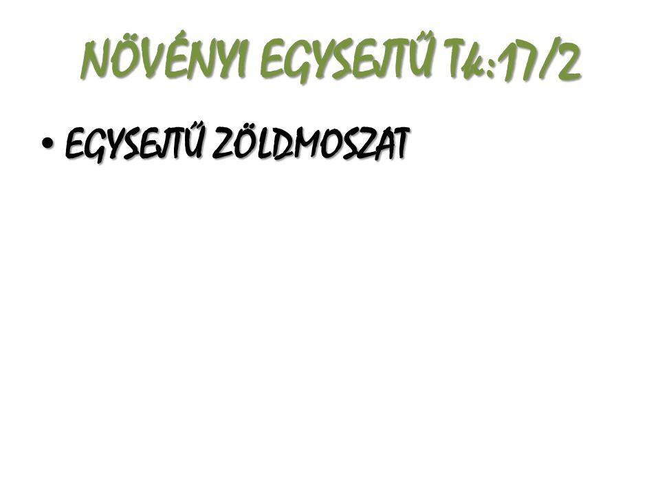 NÖVÉNYI EGYSEJTŰ Tk:17/2 EGYSEJTŰ ZÖLDMOSZAT EGYSEJTŰ ZÖLDMOSZAT