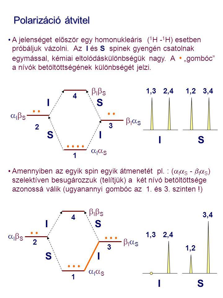 Polarizáció átvitel Polarizáció átvitel A jelenséget először egy homonukleáris ( 1 H - 1 H) esetben próbáljuk vázolni. Az I és S spinek gyengén csatol