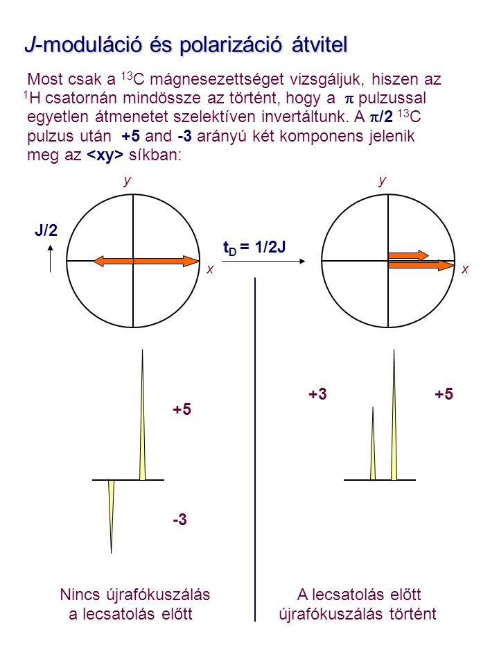 J-moduláció és polarizáció átvitel J-moduláció és polarizáció átvitel Most csak a 13 C mágnesezettséget vizsgáljuk, hiszen az 1 H csatornán mindössze