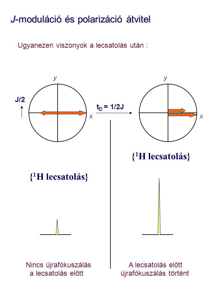J-moduláció és polarizáció átvitel J-moduláció és polarizáció átvitel Ugyanezen viszonyok a lecsatolás után : Nincs újrafókuszálás A lecsatolás előtt