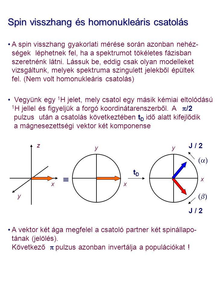 Spin visszhang és homonukleáris csatolás A spin visszhang gyakorlati mérése során azonban nehéz- ségek léphetnek fel, ha a spektrumot tökéletes fázisb