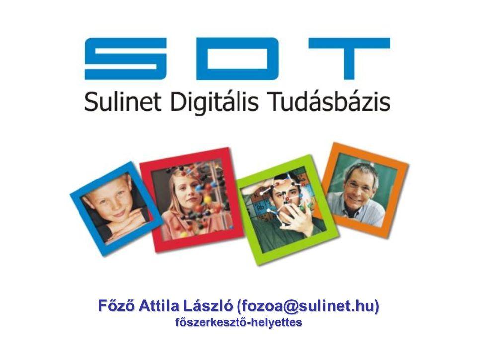 1996 Művelődési és Közoktatási Minisztérium Internet és infrastruktúra – laborok és elérés tananyagfejlesztés (web) Sulinet oktatási portál továbbképzések 2002 2002 – Sulinet Expressz Program -Központi tananyagfejlesztés és -szolgáltatás  Sulinet Digitális Tudásbázis (start: 2005.