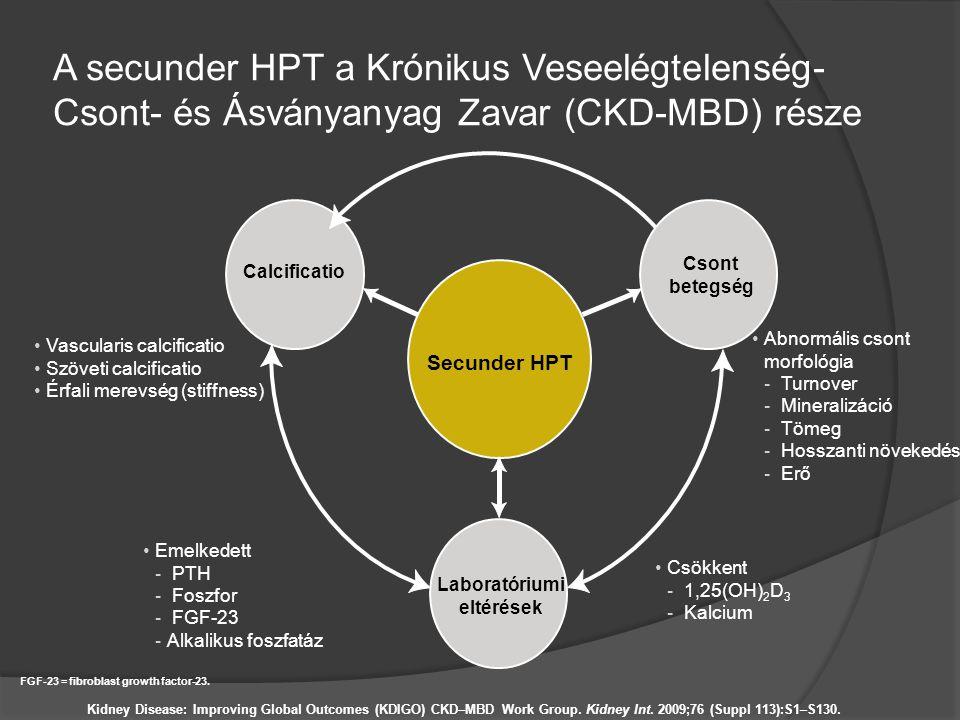 A secunder HPT a Krónikus Veseelégtelenség- Csont- és Ásványanyag Zavar (CKD-MBD) része Abnormális csont morfológia - Turnover - Mineralizáció - Tömeg