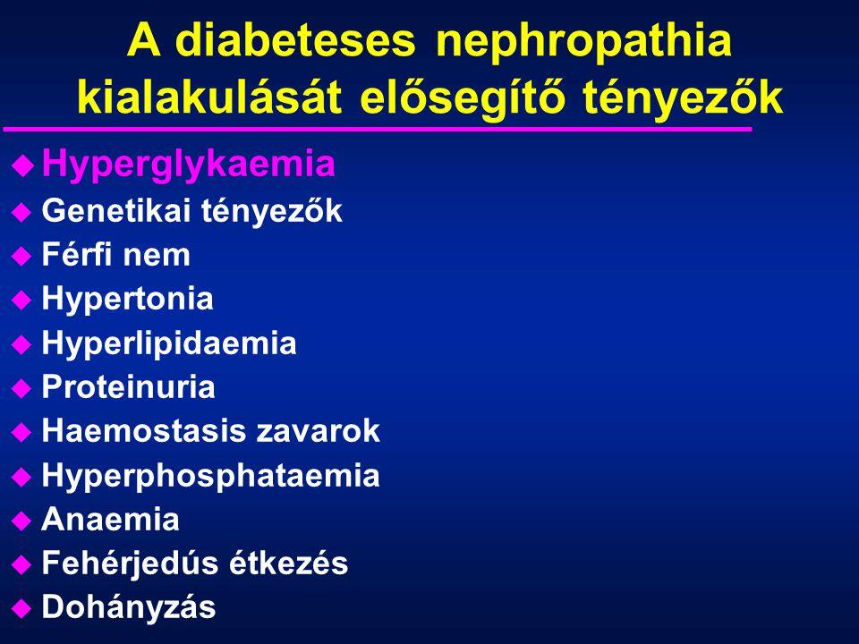A diabeteses nephropathia kialakulását elősegítő tényezők u Hyperglykaemia u Genetikai tényezők u Férfi nem u Hypertonia u Hyperlipidaemia u Proteinur