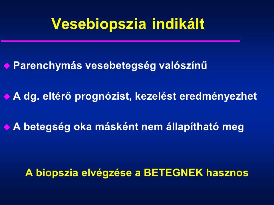 Vesebiopszia indikált u Parenchymás vesebetegség valószínű u A dg. eltérő prognózist, kezelést eredményezhet u A betegség oka másként nem állapítható