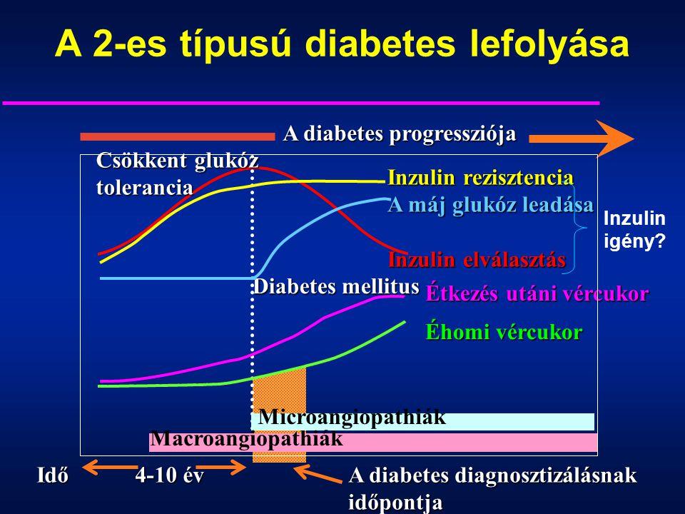 A 2-es típusú diabetes lefolyása Inzulin rezisztencia A máj glukóz leadása Inzulin elválasztás Étkezés utáni vércukor Éhomi vércukor A diabetes diagno