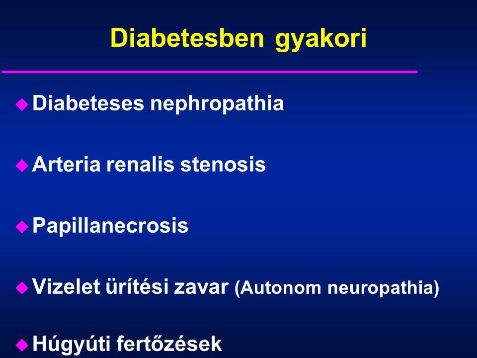 A diabetes és a vesebetegség kapcsolata u Diabetesben 2,6-5,6 x gyakoribb a vesebetegség u Diabeteses nephropathia a cukorbetegek 25-40%-ban alakul ki u 1-es típusú diabetesben gyakoribb a DN u Nem diabeteses vesebetegségek gyakorisága cukorbetegekben hasonló, mint nem diabetesekben u Nem diabeteses vesebetegség társulása diabetesszel, a megbetegedés lefolyását tovább rontja