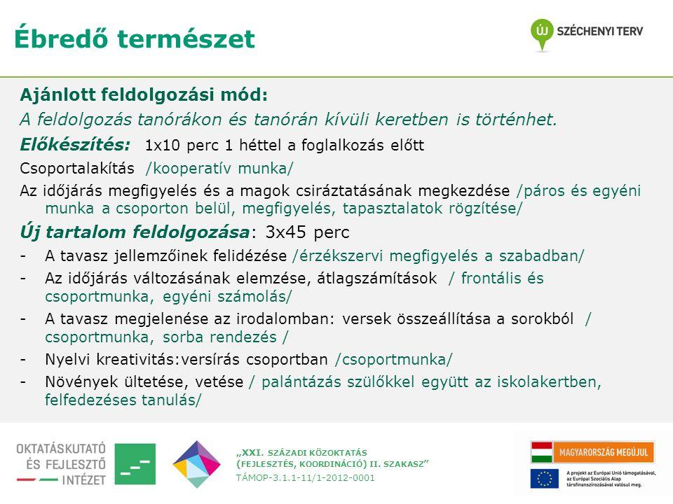 """""""XXI. SZÁZADI KÖZOKTATÁS ( FEJLESZTÉS, KOORDINÁCIÓ ) II."""
