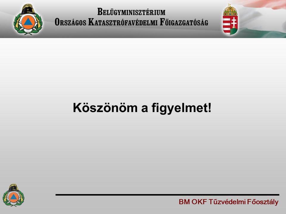 Köszönöm a figyelmet! BM OKF Tűzvédelmi Főosztály