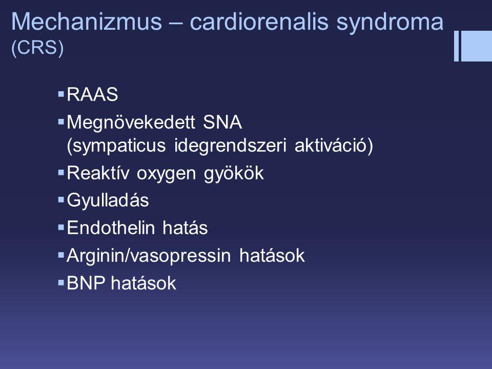  RAAS  Megnövekedett SNA (sympaticus idegrendszeri aktiváció)  Reaktív oxygen gyökök  Gyulladás  Endothelin hatás  Arginin/vasopressin hatások 