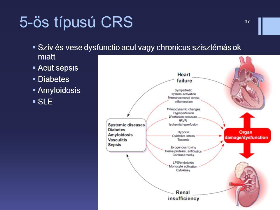 5-ös típusú CRS  Szív és vese dysfunctio acut vagy chronicus szisztémás ok miatt  Acut sepsis  Diabetes  Amyloidosis  SLE 37