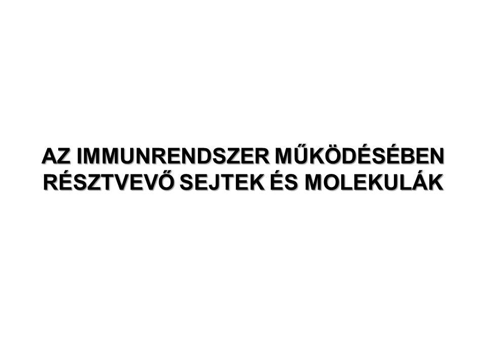 Plazmasejt NK sejt Szöveti dendritikus sejt Hízósejt Monocita Makrofág Nyirokcsomói dendritikus sejt Nyugvó limfocita AZ IMMUNRENDSZER FUNKCIONÁLISAN ELTÉRŐ SEJTJEI