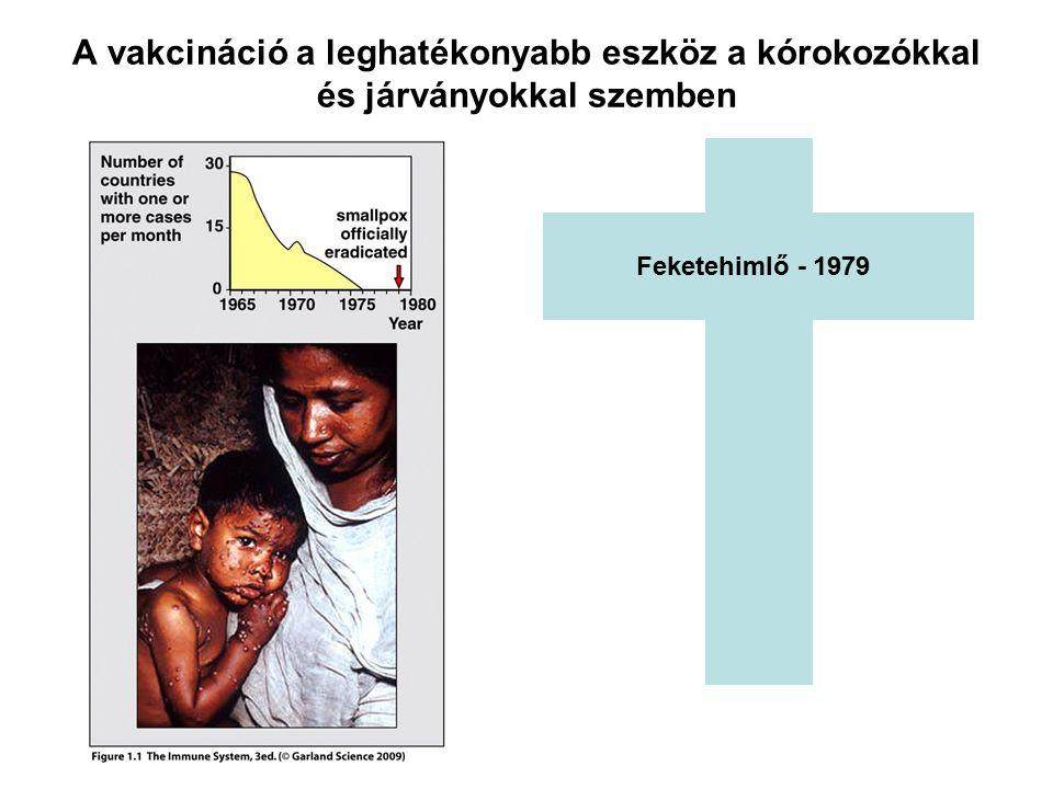 Feketehimlő - 1979 A vakcináció a leghatékonyabb eszköz a kórokozókkal és járványokkal szemben