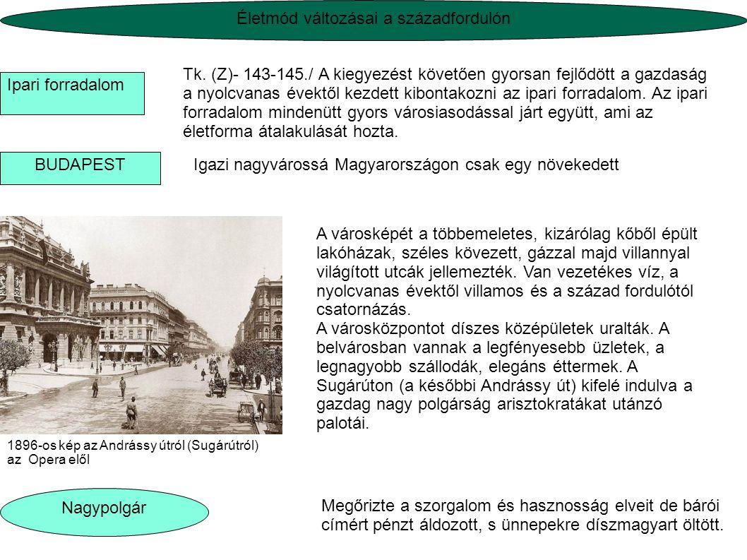 Tk. (Z)- 143-145./ A kiegyezést követően gyorsan fejlődött a gazdaság a nyolcvanas évektől kezdett kibontakozni az ipari forradalom. Az ipari forradal