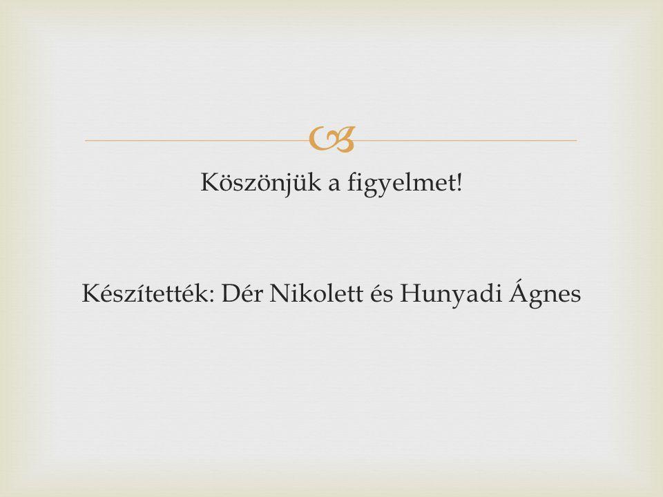  Köszönjük a figyelmet! Készítették: Dér Nikolett és Hunyadi Ágnes