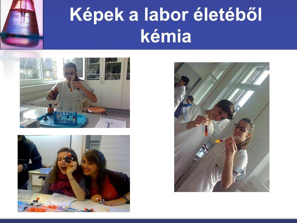 Képek a labor életéből kémia