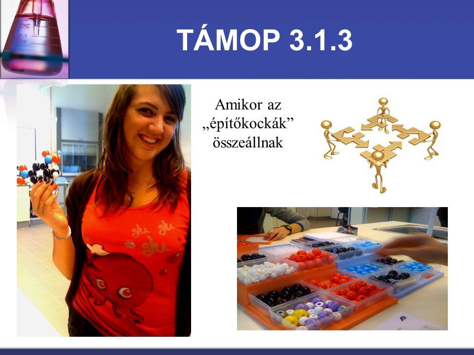 """TÁMOP 3.1.3 Amikor az """"építőkockák"""" összeállnak"""