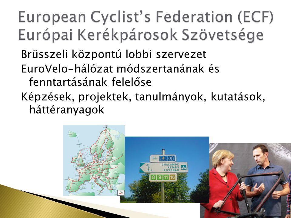 Brüsszeli központú lobbi szervezet EuroVelo-hálózat módszertanának és fenntartásának felelőse Képzések, projektek, tanulmányok, kutatások, háttéranyagok