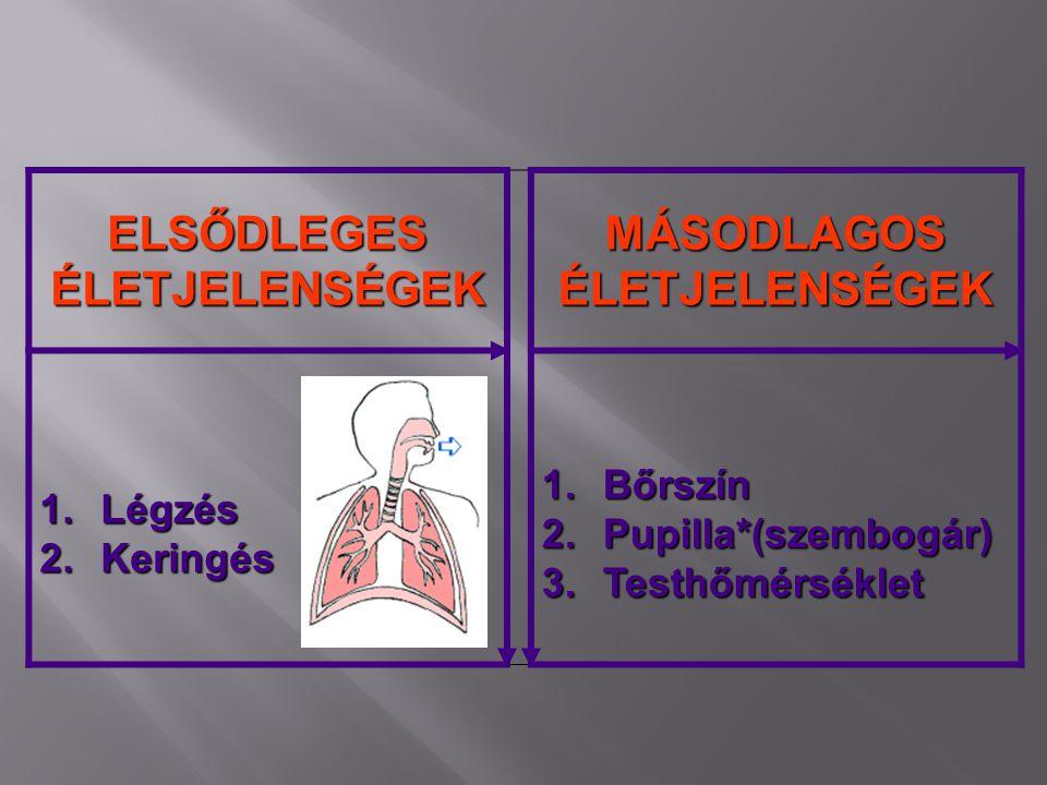 ELSŐDLEGES ÉLETJELENSÉGEK MÁSODLAGOS ÉLETJELENSÉGEK 1.Légzés 2.Keringés 1.Bőrszín 2.Pupilla*(szembogár) 3.Testhőmérséklet