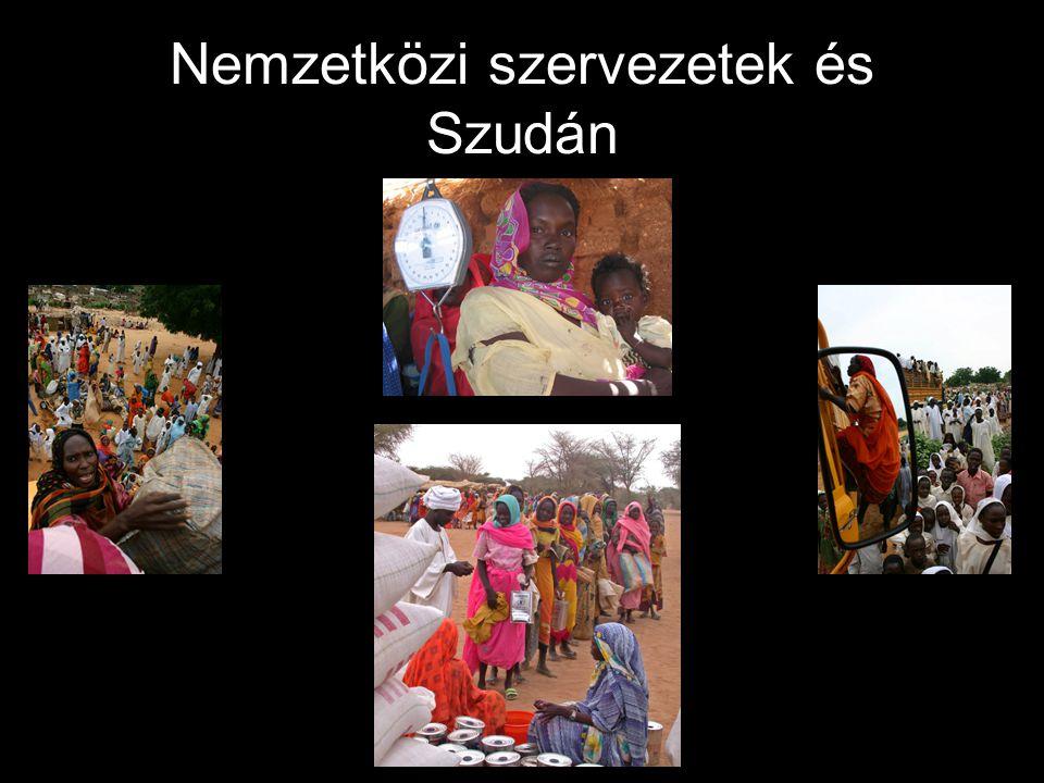 Nemzetközi szervezetek és Szudán