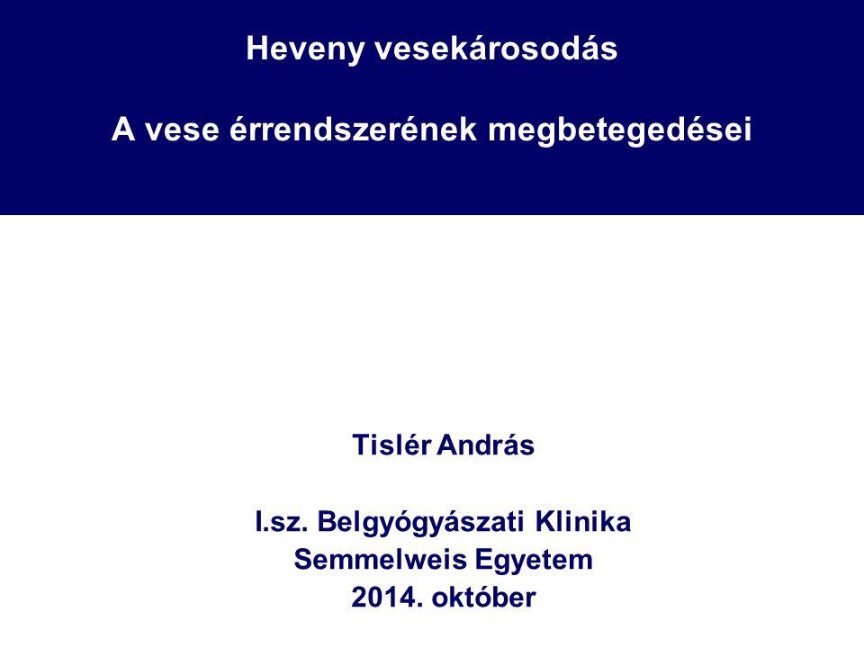 Heveny vesekárosodás A vese érrendszerének megbetegedései Tislér András I.sz. Belgyógyászati Klinika Semmelweis Egyetem 2014. október
