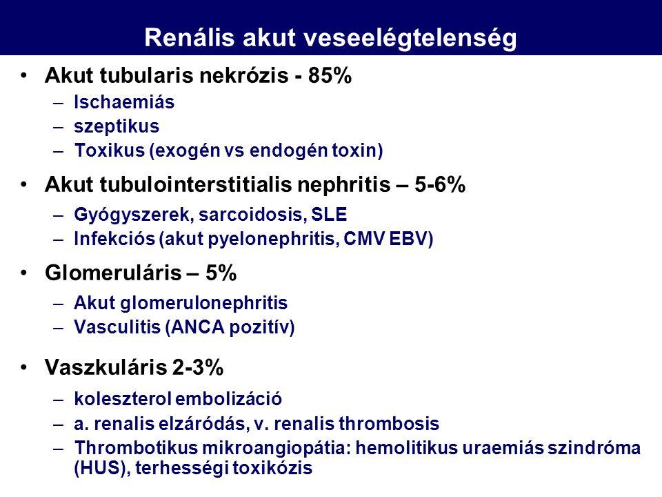 Renális akut veseelégtelenség Akut tubularis nekrózis - 85% –Ischaemiás –szeptikus –Toxikus (exogén vs endogén toxin) Akut tubulointerstitialis nephri