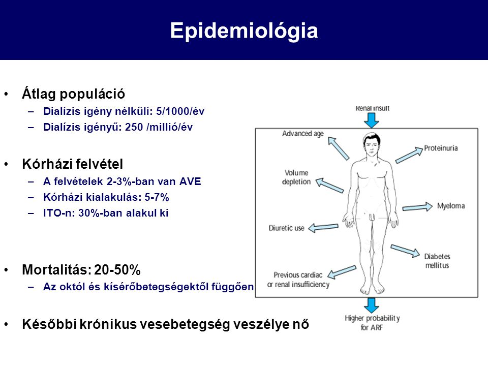 Epidemiológia Átlag populáció –Dialízis igény nélküli: 5/1000/év –Dialízis igényű: 250 /millió/év Kórházi felvétel –A felvételek 2-3%-ban van AVE –Kór