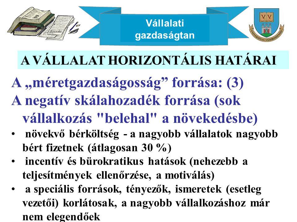 """Vállalati gazdaságtan A VÁLLALAT HORIZONTÁLIS HATÁRAI A """"méretgazdaságosság"""" forrása: (3) A negatív skálahozadék forrása (sok vállalkozás"""