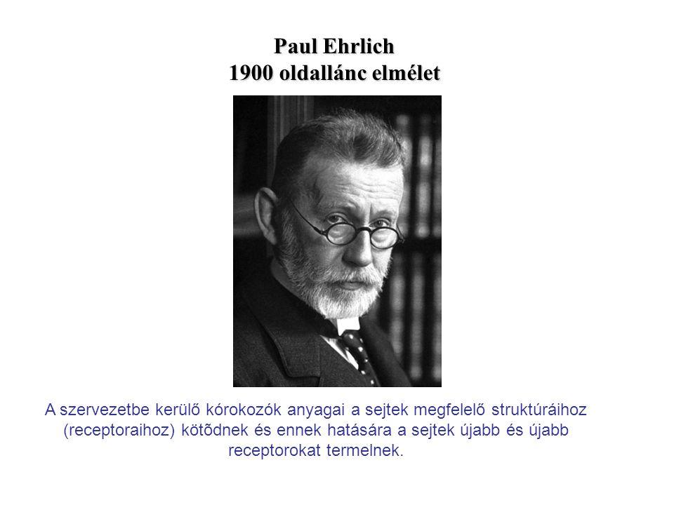 Paul Ehrlich 1900 oldallánc elmélet A szervezetbe kerülő kórokozók anyagai a sejtek megfelelő struktúráihoz (receptoraihoz) kötõdnek és ennek hatására a sejtek újabb és újabb receptorokat termelnek.