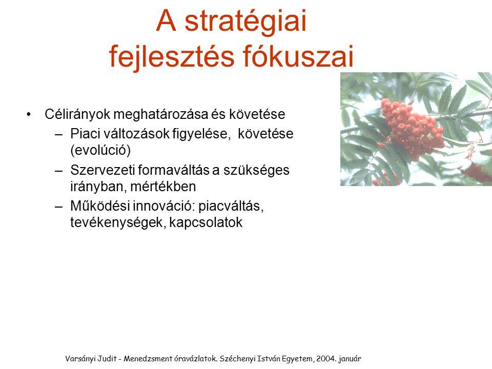 A stratégiai fejlesztés fókuszai Célirányok meghatározása és követése –Piaci változások figyelése, követése (evolúció) –Szervezeti formaváltás a szüks