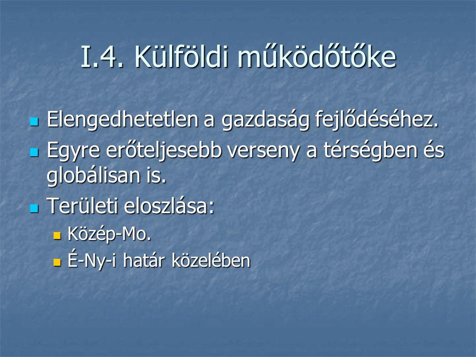 I.4. Külföldi működőtőke Elengedhetetlen a gazdaság fejlődéséhez. Elengedhetetlen a gazdaság fejlődéséhez. Egyre erőteljesebb verseny a térségben és g
