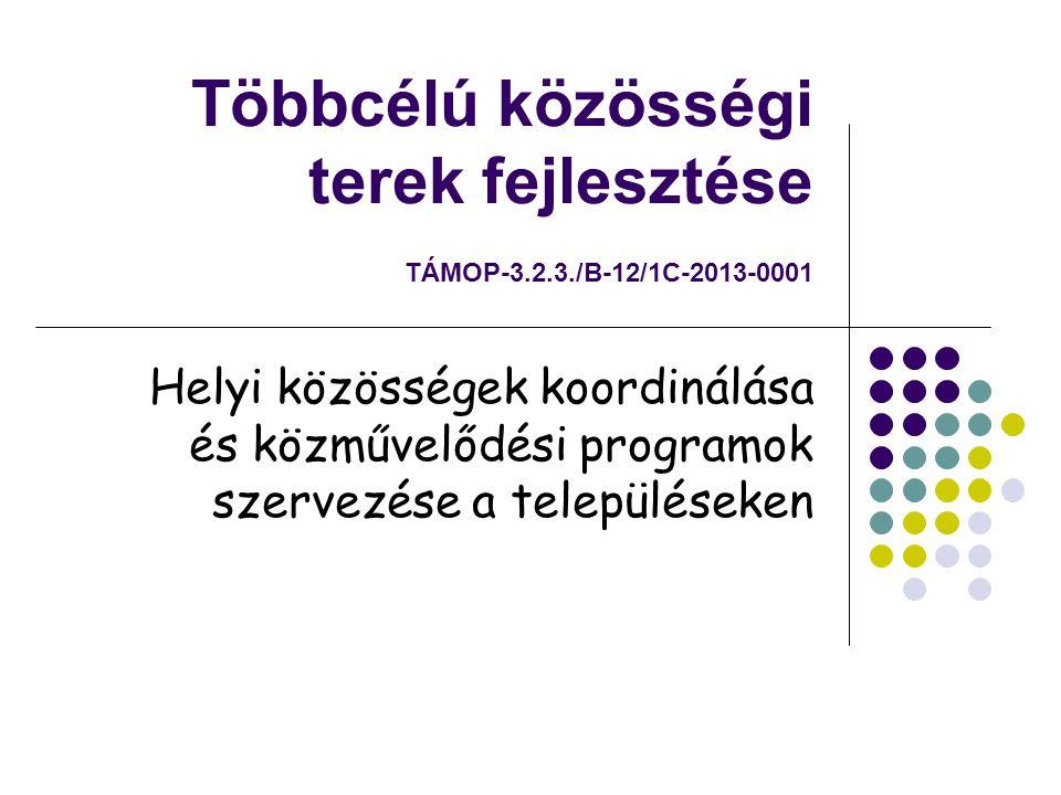Többcélú közösségi terek fejlesztése TÁMOP-3.2.3./B-12/1C-2013-0001 Helyi közösségek koordinálása és közművelődési programok szervezése a településeken