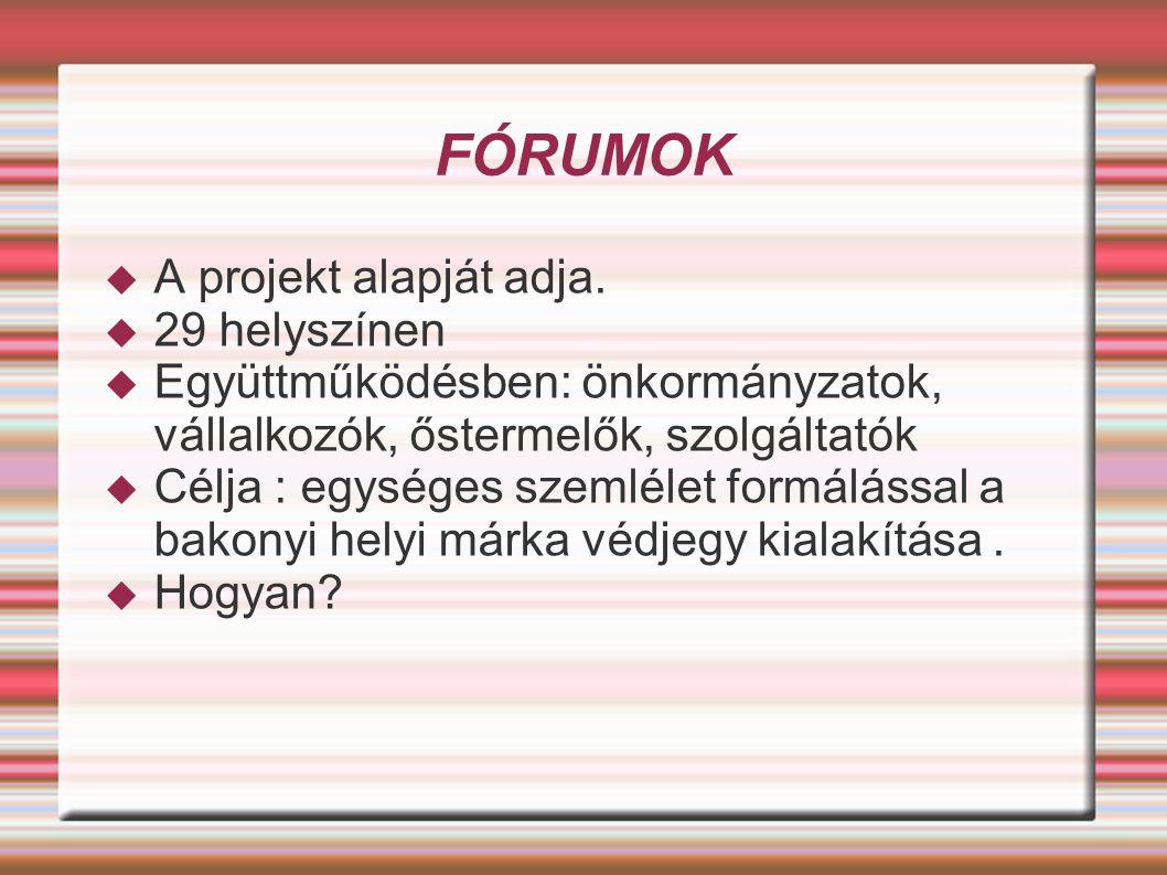 FÓRUMOK  A projekt alapját adja.  29 helyszínen  Együttműködésben: önkormányzatok, vállalkozók, őstermelők, szolgáltatók  Célja : egységes szemlél