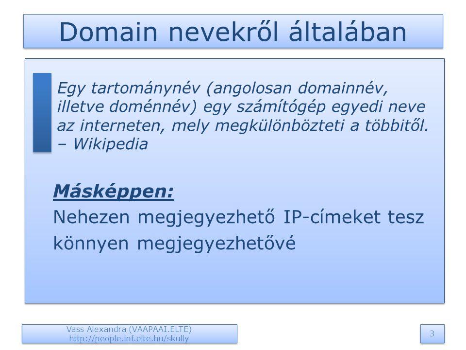 Domain nevekről általában  Egy tartománynév (angolosan domainnév, illetve doménnév) egy számítógép egyedi neve az interneten, mely megkülönbözteti a