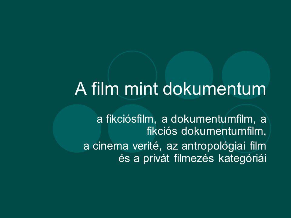 A film mint dokumentum a fikciósfilm, a dokumentumfilm, a fikciós dokumentumfilm, a cinema verité, az antropológiai film és a privát filmezés kategóriái