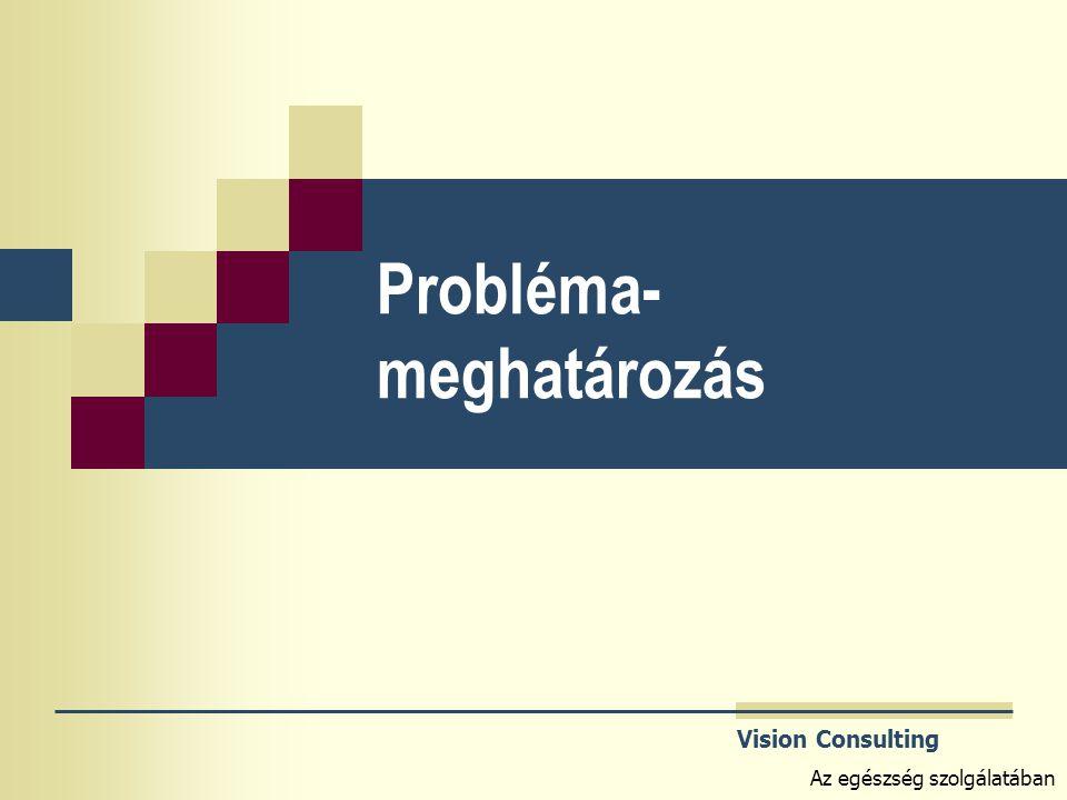 Vision Consulting Az egészség szolgálatában Probléma- meghatározás