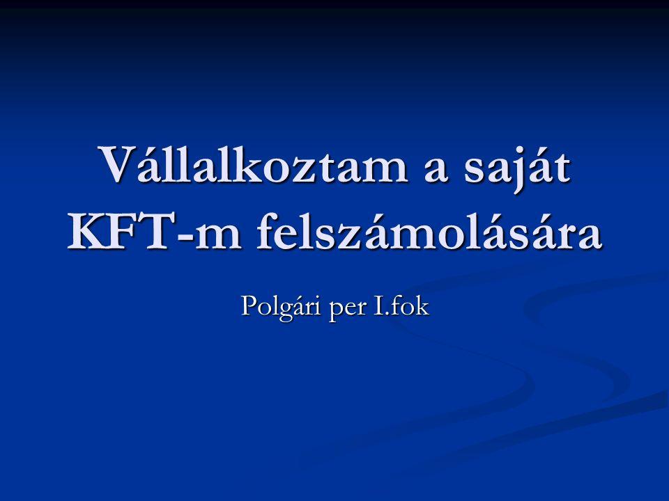 Vállalkoztam a saját KFT-m felszámolására Polgári per I.fok