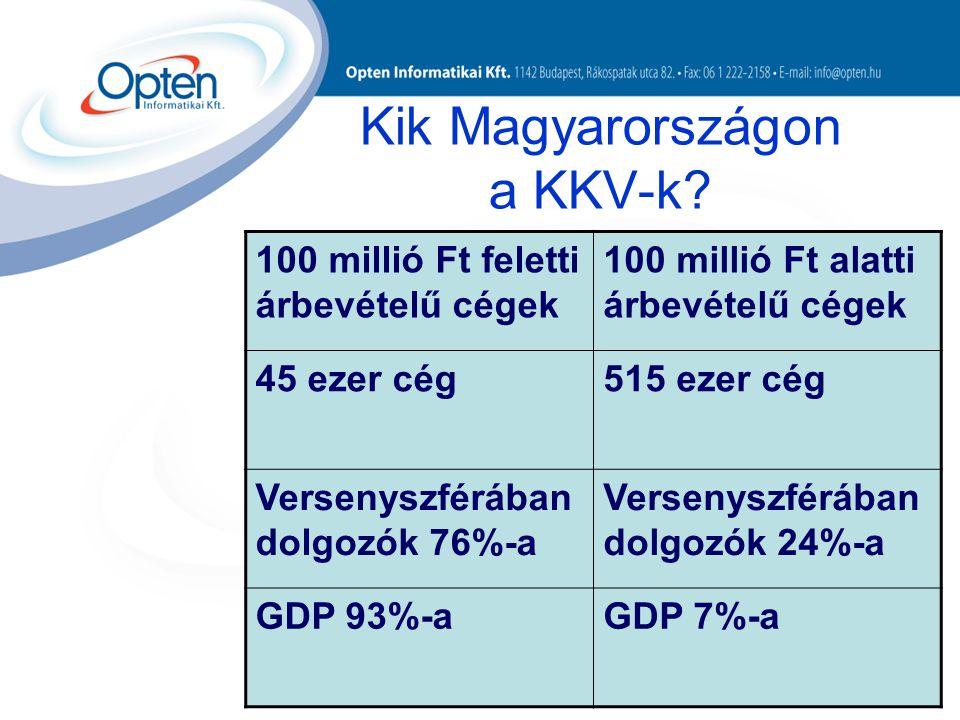 Kik Magyarországon a KKV-k.