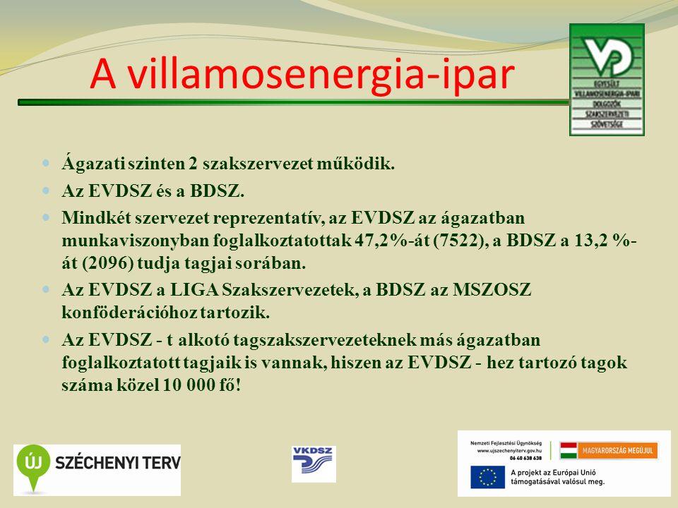 A villamosenergia-ipar Ágazati szinten 2 szakszervezet működik.