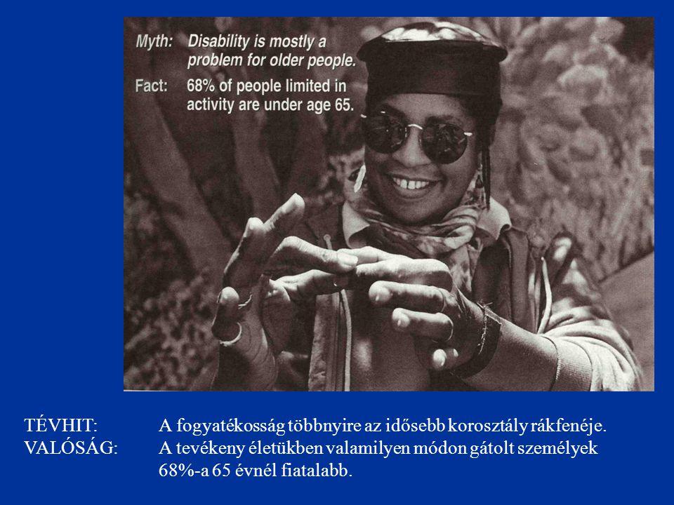 TÉVHIT: A fogyatékossággal élő személyek a népesség egy kis szegmensét teszik ki.