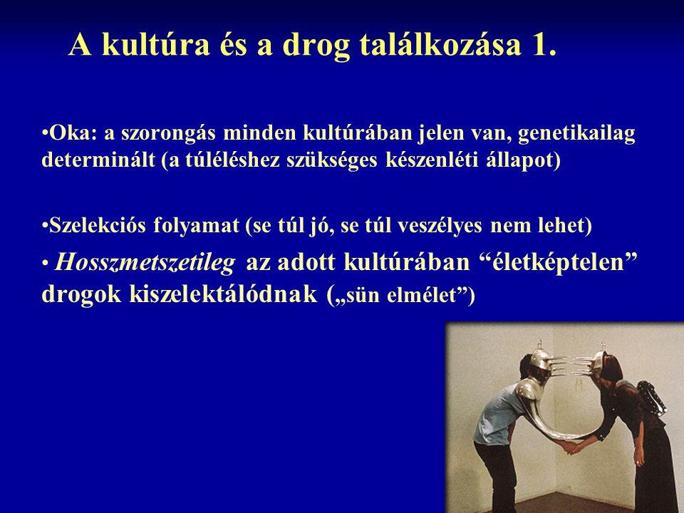 A kultúra és a drog találkozása 1. Oka: a szorongás minden kultúrában jelen van, genetikailag determinált (a túléléshez szükséges készenléti állapot)