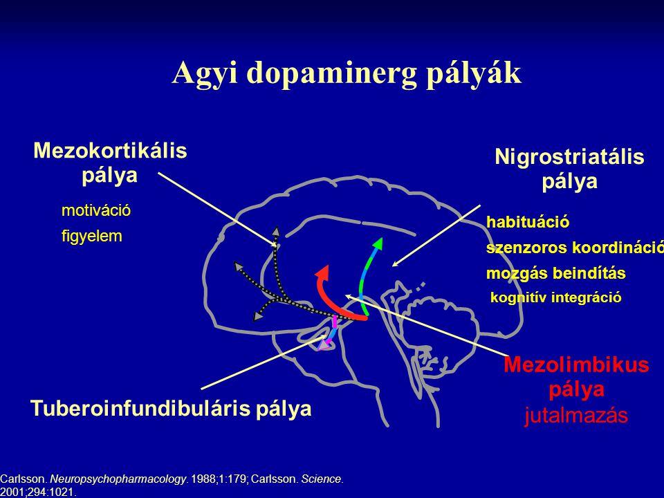 Agyi dopaminerg pályák Carlsson. Neuropsychopharmacology. 1988;1:179; Carlsson. Science. 2001;294:1021. motiváció figyelem habituáció szenzoros koordi